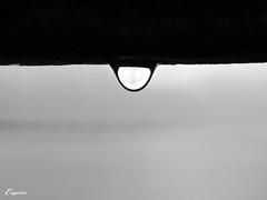 Chillon. Lgrima de cielo. (Eugercios) Tags: lluvia agua suisse suiza chuva suia chillon gota chteau castillo