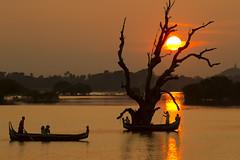 Fishermen in Amapura - Myanmar (Bertrand Linet) Tags: myanmar mandalay nationalgeographic birmanie birmania amapura bertrandlinet