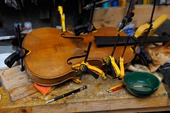 clamped up (WestLothian) Tags: nikon violin repair nikkor d3s 2470mmf28g