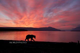 Sunrise on Naknek Lake