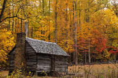 Cabin - Great Smoky Mountains National Park (BeerAndLoathing) Tags: 2013 autumn canon october outdoors rebel t3i tennessee trees trip usa virginiatrip fall fallcolors colorful leaves yellow abandoned colors colours