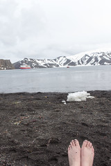 Antarctica - Day six0987 (GLRPhotography) Tags: snow ice antarctica 18200 deceptionisland