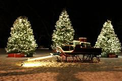 Santa's Sleigh (Read2me) Tags: christmas lights trees night decoration sled sleigh snow friendlychallenge thechallengefactory thumbsup storybookwinner otr gamewinner herowinner superherochallengewinner gamex2winner x2 bigmomma pregame flickrchallengewinner challengeyouwinner agcgsweepwinner agcgsweepchallengewinner 11e challengeclubwinner perpetualchallengewinner