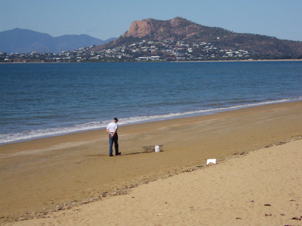 Townsville. Turtle on the beach in a cage.