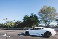 Lamborghini Murcielago - Ben Revzin Photography (BenRevzinPhotography) Tags: california road white car los nikon highway shot angeles exotic lamborghini supercar rolling d800 murcielago