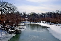 The Bronx River (Eddie C3) Tags: newyorkcity nature bronxzoo nycparks bronxriver bronxpark nikond800e