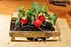 amuse - radish (joone!) Tags: japan osaka fujiya