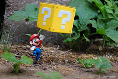 Mario Bros. 02 (Prof. Mozz) Tags: world red flower macro mushroom forest fire jump mario moustache cap question block bros powerup