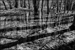 Blacklick 1: Reflections and Shadows (Stephen A. Wolfe) Tags: columbus ohio blackandwhite reflections landscape shadows waterscape silverefexpro2 fujixe1 adobelightroom54