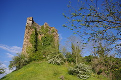 Brosse castle ruins