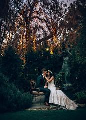 Jardin Secret (Joel Bedford) Tags: wedding bride secret jardin romance weddingdress newlyweds vsco