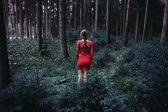 don't you mind (christie.rainey) Tags: trees red people tree nature girl fashion female fairytale forest back model woods pretty lace editorial wald redridinghood reddress enchanted braid enchantedforest ladyinred fairytaleforest fashioneditorial lacedress asseenfrombehind christierainey