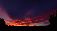 Sunset Panorama (Leela Channer) Tags: pink blue trees sunset red panorama orange cloud black france mountains nature silhouette yellow night clouds landscape evening twilight scenery colours purple dusk indigo silhouettes hills colourful silhouetted conifers garrigue