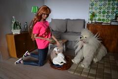starlight Poppy Parker (pe.kalina) Tags: dog doll poppy parker starlight
