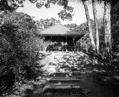 Zen Temple, Kyoto Japan (E_O_S) Tags: blackandwhite film monochrome japan garden landscape kyoto kodak buddhist religion buddhism rangefinder fujifilm analogue tmax400 ddx gf670w