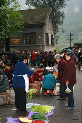 Local market in Bagou (Frhtau) Tags: life china old people house building rural asian pig countryside asia republic village market south culture scene vegetable east peoples local farmer sell markt sichuan visitor trade province chine chino chinoise pepole   schun  shibanxi shng