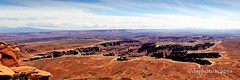Grand View Point - Monument Basin - Canyonlands National Park UT (dsphotoscapes@aol.com) Tags: canyonlandsnationalpark canyonlands moab chna monumentbasin canyonlandsnp grandviewpoint whiterimroad discovermoabcom cnhamoab