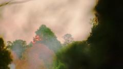 haze sunset (christinemargaretlynch) Tags: sunset control hazelbrook burnoff