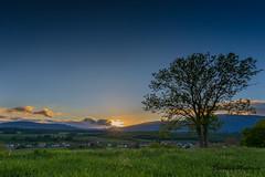 Sunset (seb.montagny) Tags: blue trees sunset sky clouds canon landscape switzerland amazing hdr coucherdesoleil 2016 eos5dmarkiii