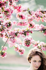 Cherry Blossoms (nicksparksphotography) Tags: camera pink flowers woman brown tree female composition zeiss canon hair cherry spring model seasons looking time blossoms center off 55mm cherryblossoms springtime blooming otus pinkflowers brownhair offcenter lookingoffcamera zeissotus55mm canon5dsr 5dsr