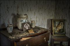 Owl house (ducatidave60) Tags: abandoned fuji decay fujifilm dereliction fujifilmxpro1 fujinonxf23mmf14