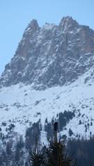 Corvo imperiale ('Corvus corax') (Lorenzo Quattrini) Tags: mountain animal crow chamonix montagna corvo montebianco