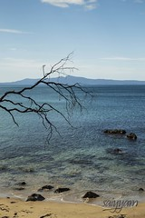 Beautifully Barren (vanita kataria) Tags: park blue winter sea sun mountain tree beach water silhouette canon sand highway rocks waves bare horizon under salt deep rocky australia down hills national hues tasmania tasman tasmansea barren downunder saltwater 6d freycinet