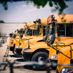 buses bbw (johnfromtheradio) Tags: school bus buses fence wire vines barbed
