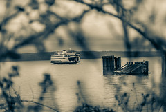 the charm of waiting for a ferry (nolleone--Nol, like Christmas) Tags: blue water ferry washington waiting bokeh vine noelleone