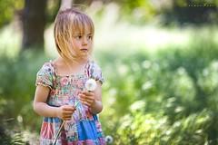 Dandelion (foto.evines) Tags: portrait childhood canon outdoors child candid 135l canon135mm evinesfoto
