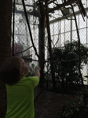 "Paul at the Dallas Aquarium • <a style=""font-size:0.8em;"" href=""http://www.flickr.com/photos/109120354@N07/27244226073/"" target=""_blank"">View on Flickr</a>"