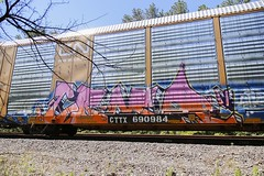 Coma (Revise_D) Tags: graffiti freight coma revised bsgk benching benchingsteelgiants