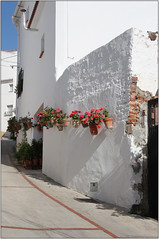 Geranium Wall (Mabacam) Tags: flowers plants white streets gardens buildings walking spain village hiking andalucia moorish walls 2016 canillasdealbaida