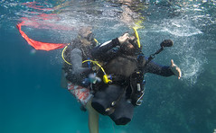 2514 Andrew Searle (KnyazevDA) Tags: sea underwater wheelchair scuba diving disabled diver padi undersea handicapped amputee disability
