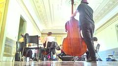 Chamber Orchestra Rehearsal (albarbosa92) Tags: rehearsal violin cello orchestra chamber viola doublebass violoncello