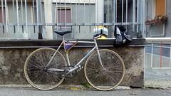i like big butts (Delta9OfficinaCritica) Tags: 1982 fci streetshit viner gipiemme trailbreaker specialcourse fixedforum