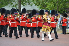 Move Music (dhcomet) Tags: london band royal parade guards scots themall troopingthecolour pegeantry