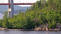 The High Coast bridge on the Hornn island side (Franz Airiman) Tags: bridge cruise sweden cruiseship bro scandinavia suspensionbridge norrland hgakusten birka highcoastbridge hgakustenbron kryssning highcoast birkacruises kryssningsfartyg hngbro