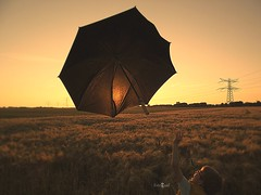 Look, a flying umbrella! (Fotogaaf Amanda) Tags: sunset sun umbrella landscape evening zonsondergang avond zon landschap barleyfield gerst