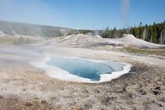 CT-YellowstoneTrip-112 (Cecilia T.) Tags: usa yellowstone wy uppergeyserbasin