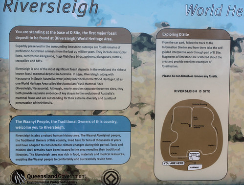 'D Site' explanation board, Riversleigh