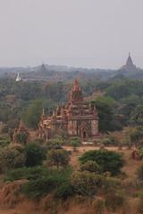 2016myanmar_0358 (ppana) Tags: bagan alodawpyay pagoda ananda temple bupaya dhammayangyi dhammayazika gawdawpalin gubyaukgyi myinkaba wetkyiin htilominlo lawkananda lokatheikpan lemyethna mahabodhi manuha mingalazedi minochantha stupas myodaung monastery nagayon payathonzu pitakataik seinnyet nyima pagaoda ama shwegugyi shwesandaw shwezigon sulamani thatbyinnyu thandawgya buddha image tuywindaung upali ordination hall