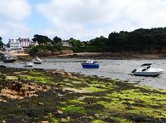 P1040886 Ile de Brehat (Photos-Tony Wright) Tags: ocean sea france june de boats boat brittany ile 2016 brehat iledebrehat