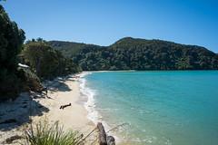 (Guy Oved) Tags: newzealand nz tasman abeltasmannationalpark
