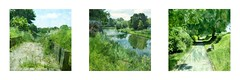 Srie du 09 06 16 : Dunkerque (basse def) Tags: france river vegetal