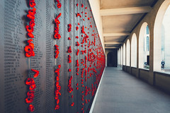 Roll of Honour (WhiteWith0ne) Tags: flowers wall architecture memorial shrine arch au australia courtyard poppies canberra remembrance act australiancapitalterritory australianwarmemorial rollofhonour redpoppies