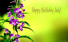 Happy Birthday July! (gustaf wallen) Tags: june july goodmorningjuly happybirthdayjuly hellojuly