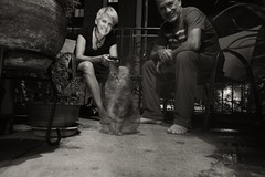 Try Explaining a slow exposure to a cat. Self Portrait with Linda and Frida L1112070 (1) (erlin1) Tags: blackandwhite bw usa minneapolis frida nighttime linda mn leicam9 25mmvoigtlander