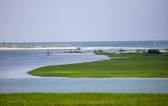 Returning (Gabriel FW Koch) Tags: marsh grass green water ocean boat boats fishing swimming fun summer telephoto sigma canon eos dof nature sun sunlight