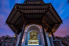 Peace Pagoda (fat.photography2015) Tags: park london colors bronze garden colorful buddha buddhist religion buddhism battersea siddhartha